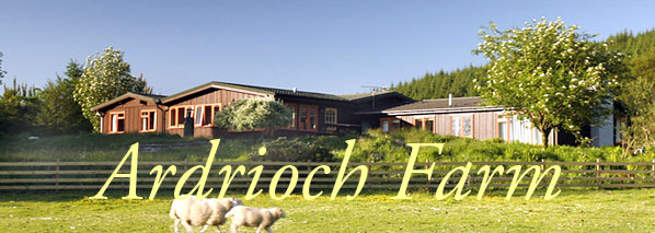 Isle of Mull self catering                       holiday cottages
